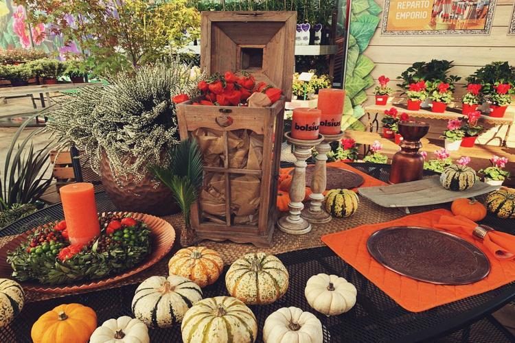 garden festival autunno steflor