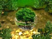 ambiente_tutela
